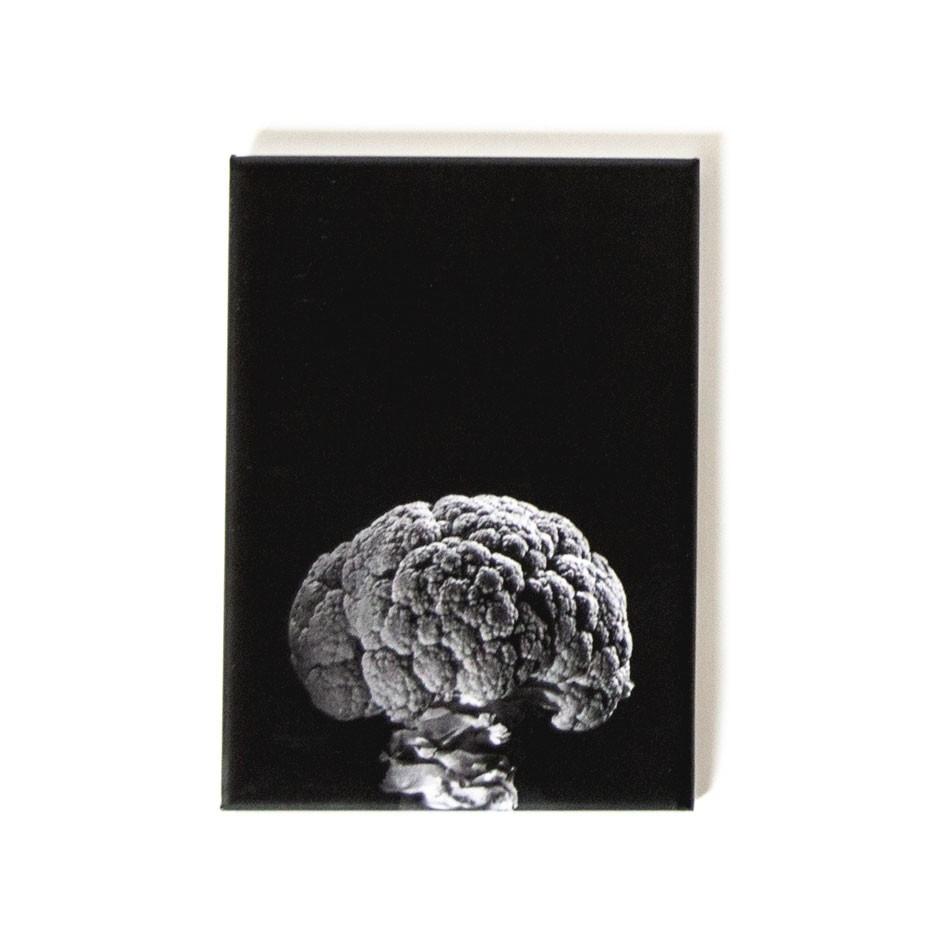 "CAROLAS GARTEN – Magnet ""Blumenkohl"""