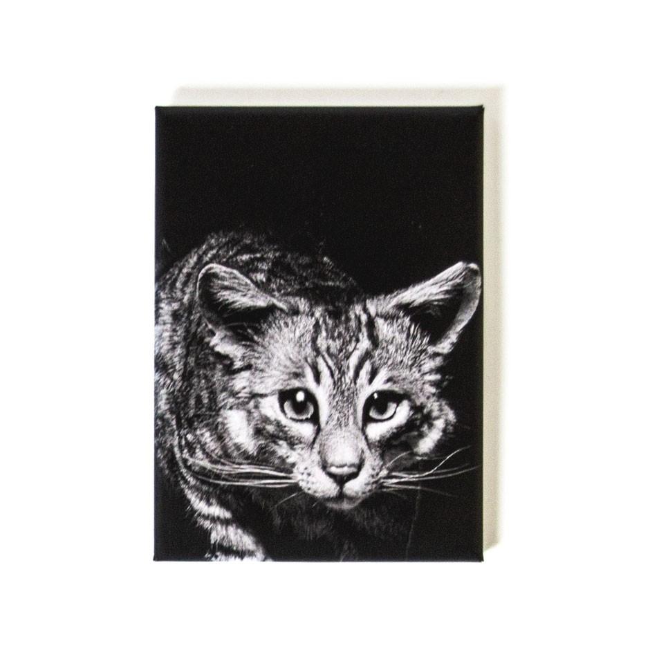 """CAROLAS GARTEN – Magnet """"Katze"""""""