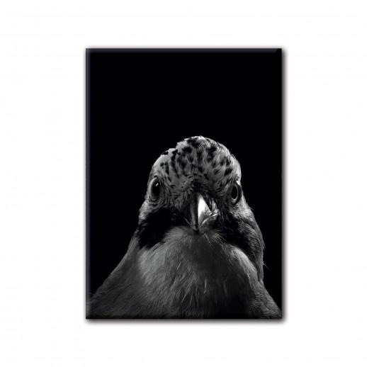 "CAROLAS GARTEN – Magnet ""Vogel"""
